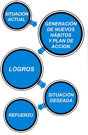 Proceso Estratégico PNL