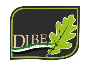 partners-coachingdelmarketing-dibe