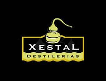 partners-coachingdelmarketing-xestal